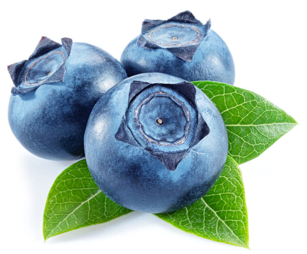 private label skin care blueberry peel