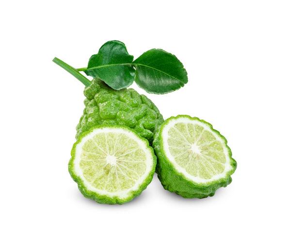 bergamot fruit private label skin care
