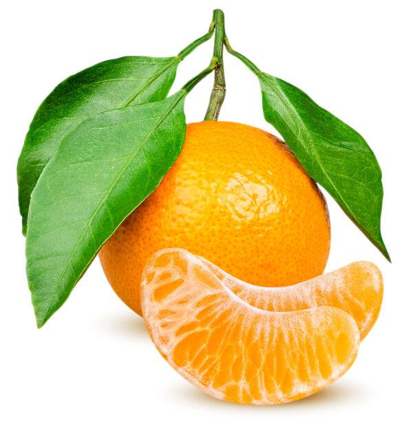 tangerine private label fragrance
