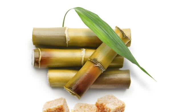private label sugar cane glycolic acid